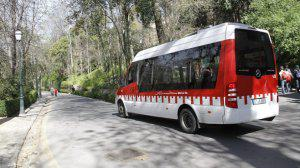 autobus-Alhambra-c3-300x168