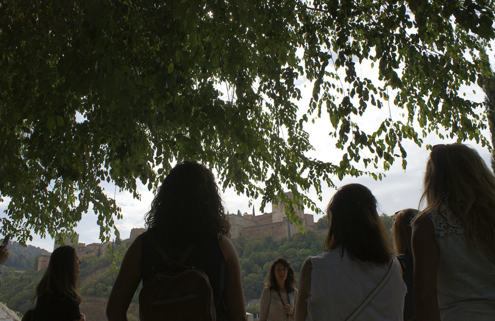 Private Albaicin walking tour and Gypsy Sacromonte
