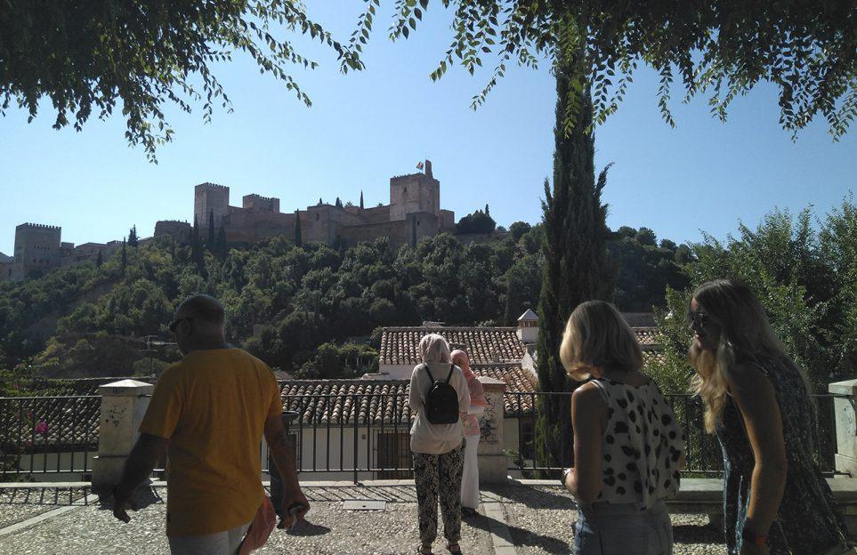 Essential Granada private tour