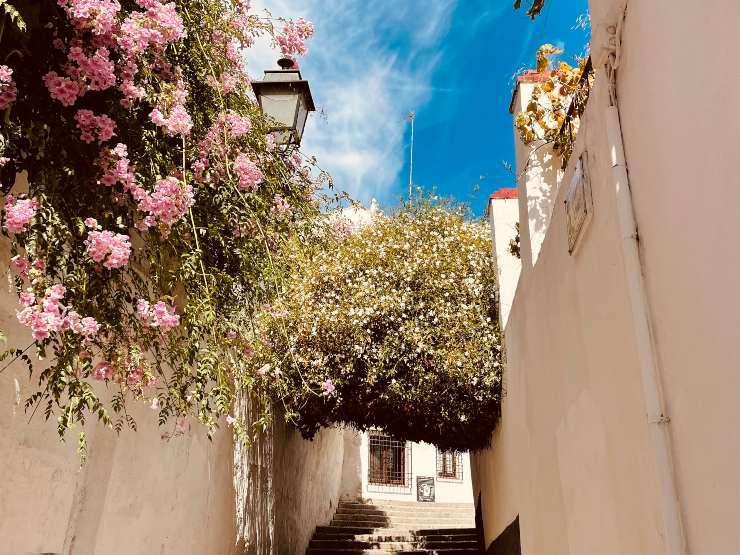 romantic street in the albaicin